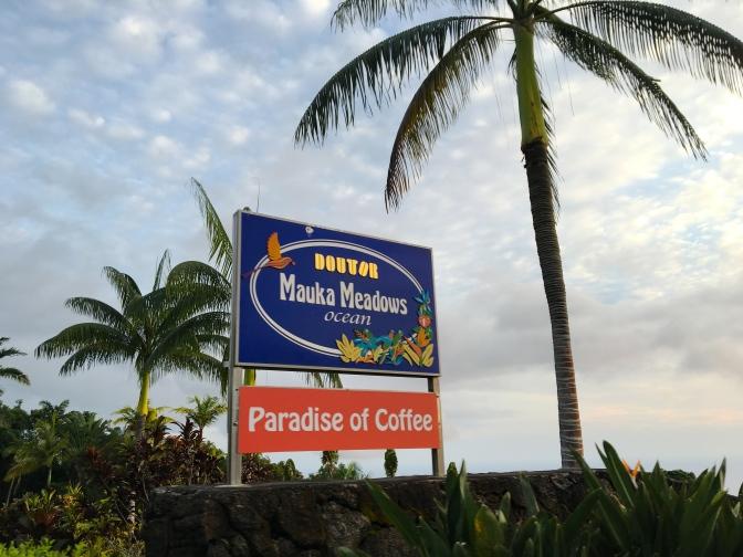ハワイ島で発見!ドトールコーヒーの農園